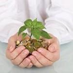 Малый бизнес – как получить кредит?